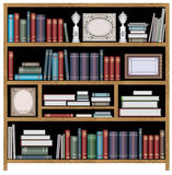 Vector bookcase Royalty Free Stock Image