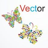 Vector a borboleta ideal ilustração do vetor