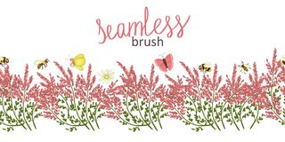 Vector  border brush with wild flowers and insects royalty free illustration