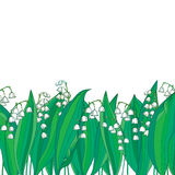 Vector border with outline white Lily of the valley or Convallaria flower and green leaves isolated. Ornate floral for sprring. Royalty Free Stock Photo