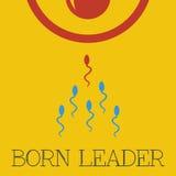 Vector born leader flat. File format eps 10 Royalty Free Stock Photos