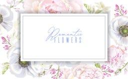 Peony anemone banner stock illustration