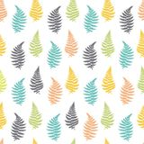 Vector botanical illustration of fern leaf. Isolated outline modern drawing of tropical plant. Set of exotic fern leaves silhouettes. Vector seamless Royalty Free Stock Image