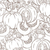 Vector botanical pattern with pumpkins, flowers and leaves. Stock Photos