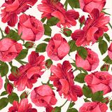 Botanical seamless pattern with Luxurious bright red roses flowe. Vector botanical seamless pattern with Luxurious bright red roses flowers.Modern floral pattern vector illustration