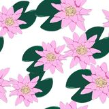 Vector botanical seamless pattern with pink lotus flowers. Background design for natural cosmetics. stock illustration