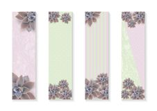 Vector botanical vertical banners set with flowers Graptopetalum. Poster Design for cosmetics, spa, health care products. Vector botanical vertical banners set vector illustration