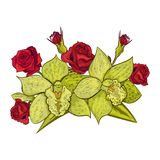 Vector bouquet of flowers. For the design of cards, invitations, price tags, poster Royalty Free Stock Image