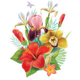 Vector bouquet with flowers Stock Photography