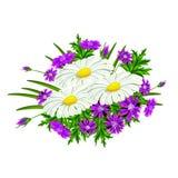 Vector bouquet of flowers Stock Photos