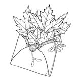 Vector bouquet with outline Acer or Maple ornate leaves and samaras in black in open craft envelope isolated on white background. Contour foliage of Maple tree stock illustration