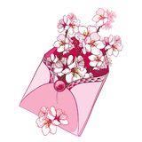 Vector bouquet with outline blooming Apricot flower bunch in pastel pink in open craft envelope isolated on white background. Stock Images