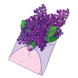Vector bouquet with outline purple Lilac or Syringa flower and leaf in open craft envelope in pastel colors isolated on white. Vector bouquet with outline Stock Photography