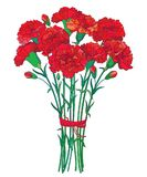 Vector bouquet with outline red Carnation or Clove flower, bud and green leaf isolated on white background. Ornate carnation. Vector bouquet with outline red Royalty Free Stock Images