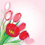Vector bouquet with outline red tulips flowers and green leaves on the pink background. Template with ornate floral elements. Stock Photo