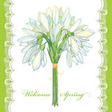 Vector bouquet with outline Snowdrop flowers or Galanthus and lace in pastel colors  on white. Greeting card with flowers. Royalty Free Stock Photography