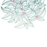 Vector bouquet with outline Tradescantia or Inch plant or Wandering Jew flower. Flower and leaf in pastel green and pink isolated. Vector bouquet with outline Stock Photo