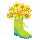 Vector bouquet with outline yellow narcissus or daffodil flower in the green rubber boot isolated on white background. Royalty Free Stock Images