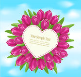 Vector bouquet of tulips with a greeting card Stock Images