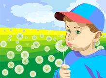 Vector boy blowing on a dandelion in the meadow. Little boy in a blue cap and blue jacket, blowing on a dandelion in the summer on a green meadow Royalty Free Stock Photos