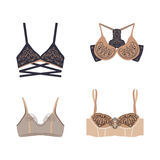 Vector bra Royalty Free Stock Images