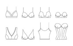 Vector bra in thin line style. Royalty Free Stock Image