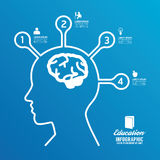Vector brain design diagram line infographics options banner. Royalty Free Stock Photography