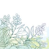 Vector branch with outline poisonous plant Privet or Ligustrum. Berry bunch and ornate leaf in pastel green on the textured back. Stock Illustration