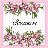 Vector branch with pink flowers invitation card vector illustration