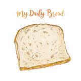 Vector bread isolated. Whole grain Sliced bread isolated on white background top view vector illustration isolated royalty free illustration