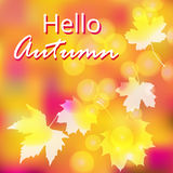Vector Bright Colorful Background Stock Photos
