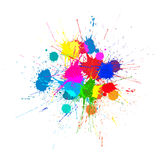 Vector Bright Ink Color Blots on the white background Stock Images