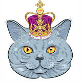 Vector British cat in gold crown Royalty Free Stock Photo