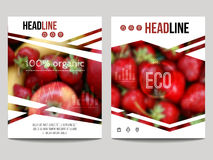 Vector brochure design template with blur background with fruits. And strawberry. Healthy fresh food, vegeterian and eco concept. Can be used for presentation Stock Images