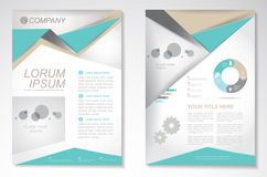 Vector Brochure Flyer design Layout template.infographic Royalty Free Stock Images