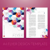 Vector brochure flyer template design with triangle elements. Stock Photography