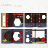Vector brochure layout design with special fancy style Stock Photos