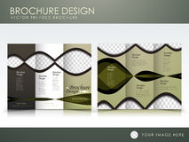 Vector brochure layout design template Royalty Free Stock Images