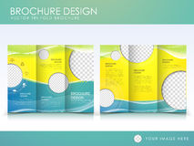 Free Vector Brochure Layout Design Template Stock Photography - 37411472