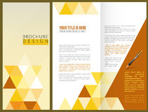Vector Brochure Layout Design. Template Royalty Free Stock Images