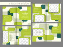 Vector brochure layout design template Stock Photography