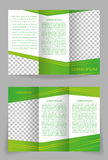 Vector brochure template design with abstract gree Royalty Free Stock Photo