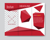 Vector brochure template design with red elements Stock Images
