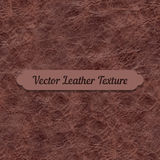 Vector brown crumpled leather texture Stock Image