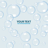 Vector bubbles on blue background Stock Photography
