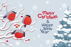 Vector bullfinches and rowan Christmas and New Year image royalty free illustration
