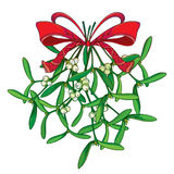 Vector bunch with outline Mistletoe and ornate red bow with ribbon isolated on white. Green leaves, berry and branch of Mistletoe. Vector bunch with outline Royalty Free Stock Photos