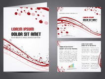 Vector business brochure Stock Image