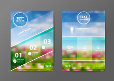 Vector business brochure flyer design layout template. Business brochure flyer design layout template in A4 size, With blurred of flowers background, Vector Royalty Free Stock Images