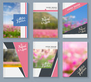 Vector business magazine cover with flowers nature landscape background Royalty Free Stock Photography
